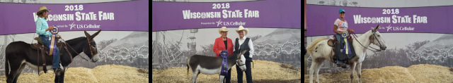 2018 State Show