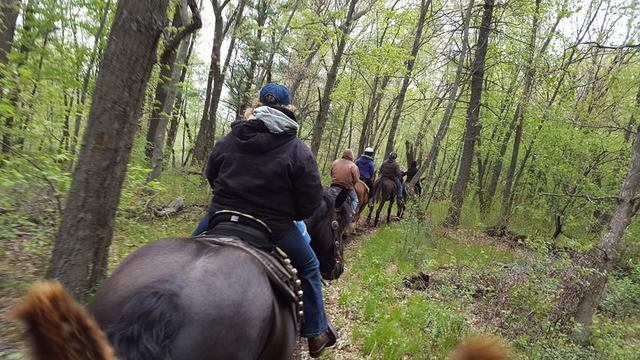 WDMS_Spring_Trail_Ride_2016_05.jpg
